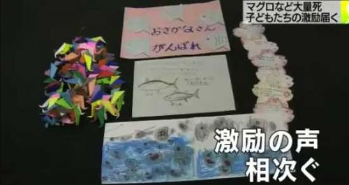 Письма поддержки и оригами в надежде предотвращения гибели голубого тунца